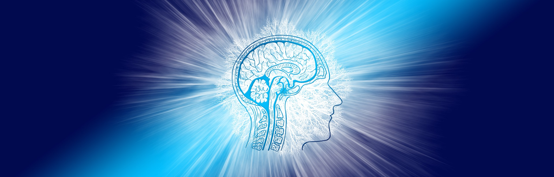 Neurogenesis or the state of continuing creation of ourselves