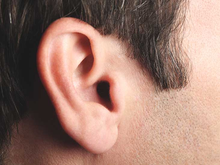 Is There Benefit for Auditory Training with Hearing Aid Users?