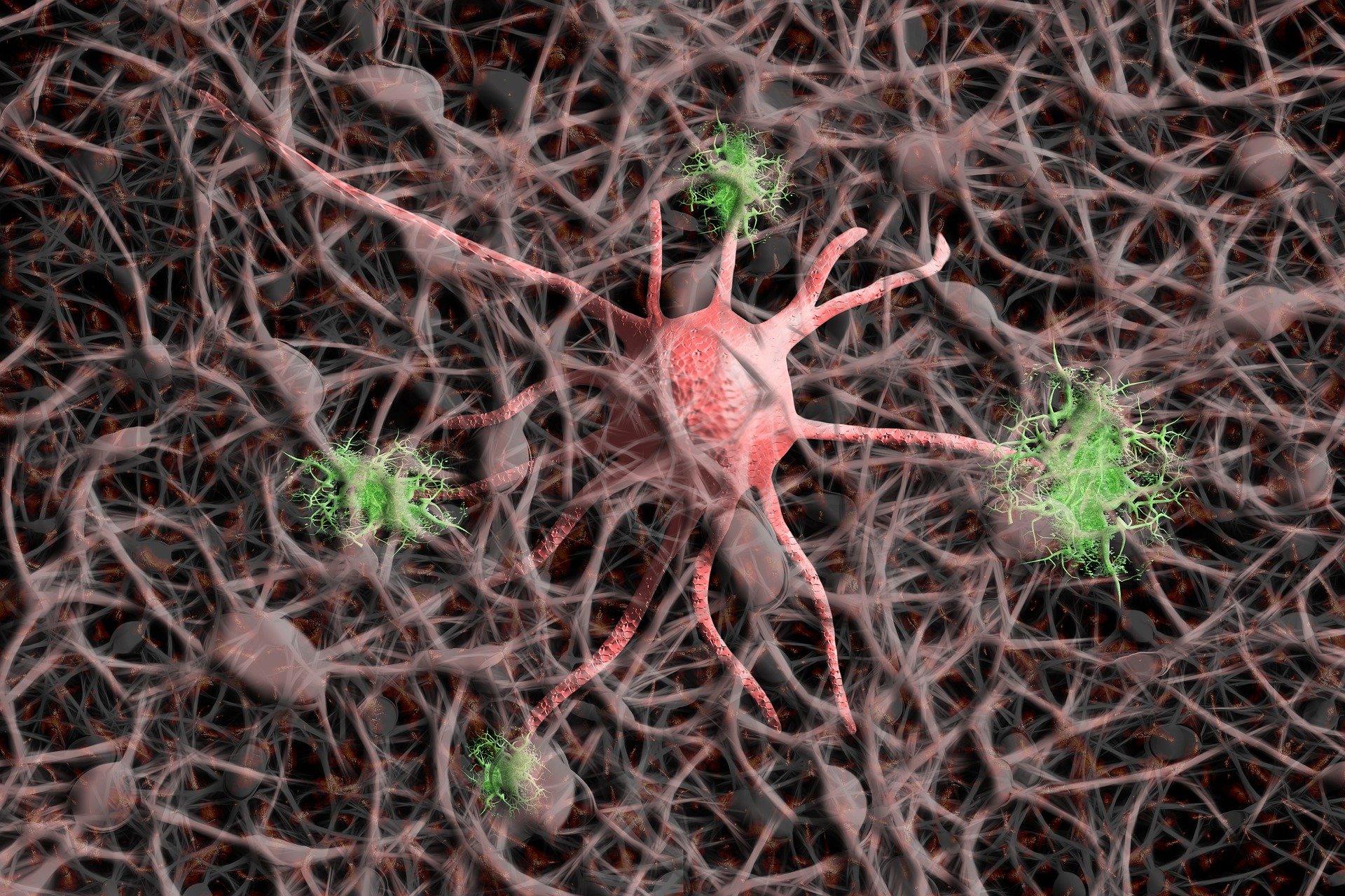 Neuroregeneration: New Therapeutics for Alzheimer's Dementia