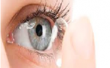 Lentes de contacto multifocales: Biofinity vs Purevision 2